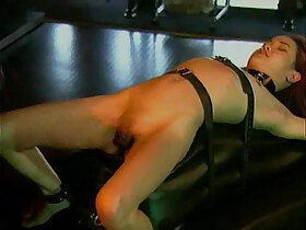 amateur porn - Kitty Bondage Fantasy